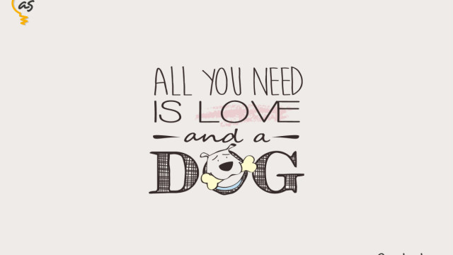 Diseno-01-Postal-15-x-10-cm2-640x360 All you need is love and a dog